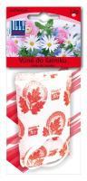 Květinová vůně do šatníku-skříně, k zavěšení, 2ks (Jolly 3068)